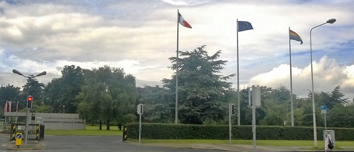 Image of three flags flying at the entrance to UCD.