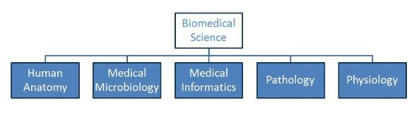 Biomedical Sciences Section