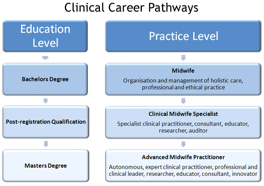 Nurse Career Pathway Examples