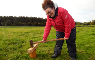 PhD student Laura Gallego hammering a collar to measure soil respiration in the Long-Term Slurry experimental field at AFBI Hillsborough, Northern Ireland (photo credit: Mauricio Cruz Mantoani). Laura's PhD with Prof Bruce Osborne is on assessment of greenhouse gas emissions on long-term managed grasslands.