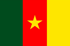 int13-img-flags-Cameroon