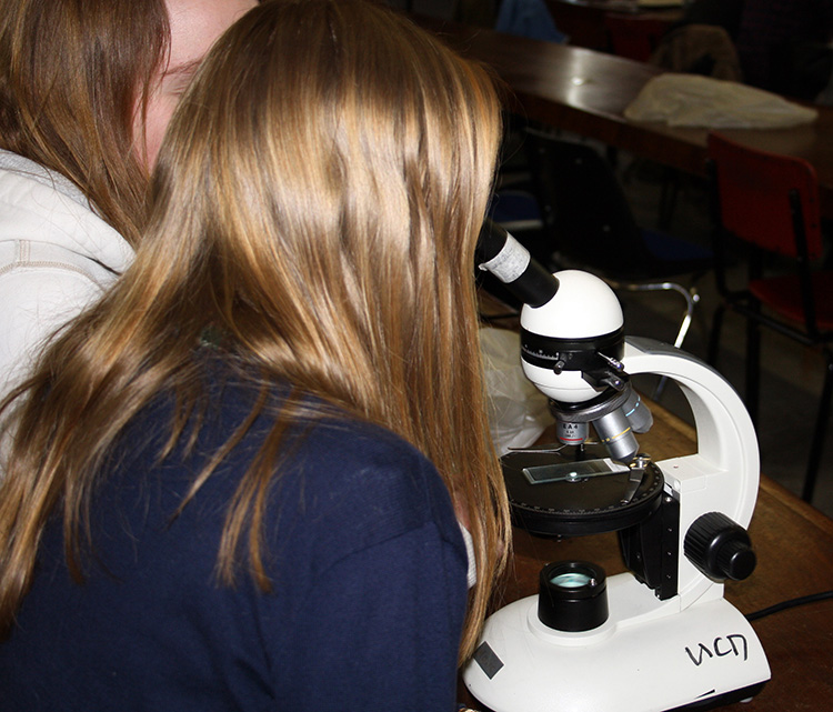 Using optical microscopy in the UCD Earth Sciences workshop