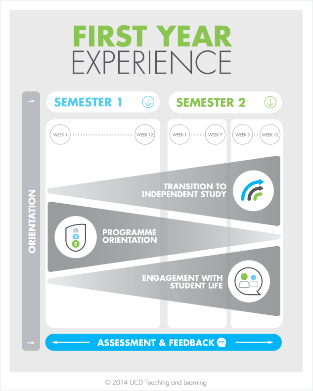 Diagram of first year experiences
